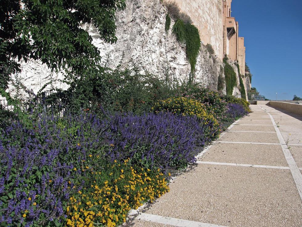 2014_4Categoria_Cagliari